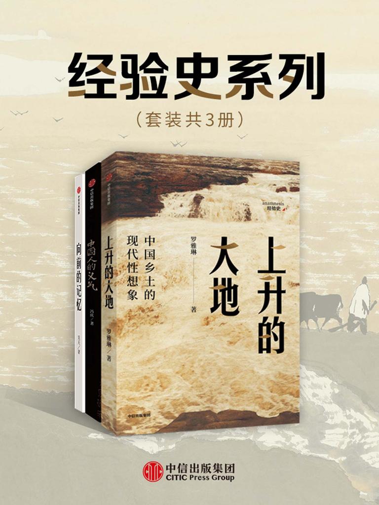 经验史书系(套装共3册)