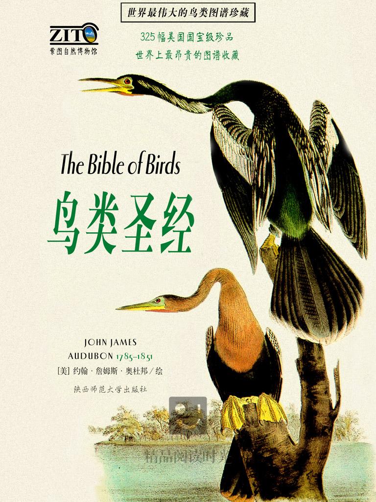 鸟类圣经(珍藏版)