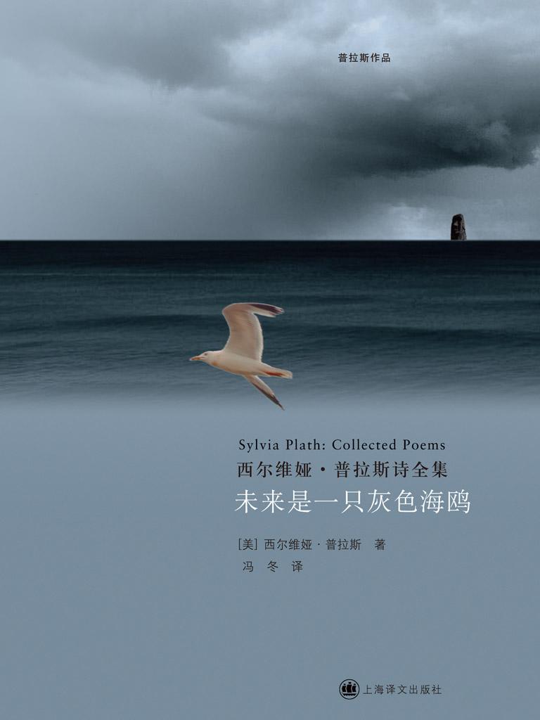 未来是一只灰色海鸥(普拉斯作品)