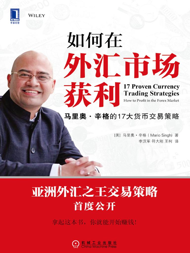 如何在外汇市场获利:马里奥·辛格的17大货币交易策略