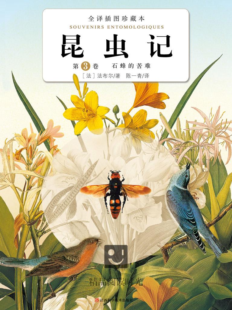 昆虫记 3:石蜂的苦难