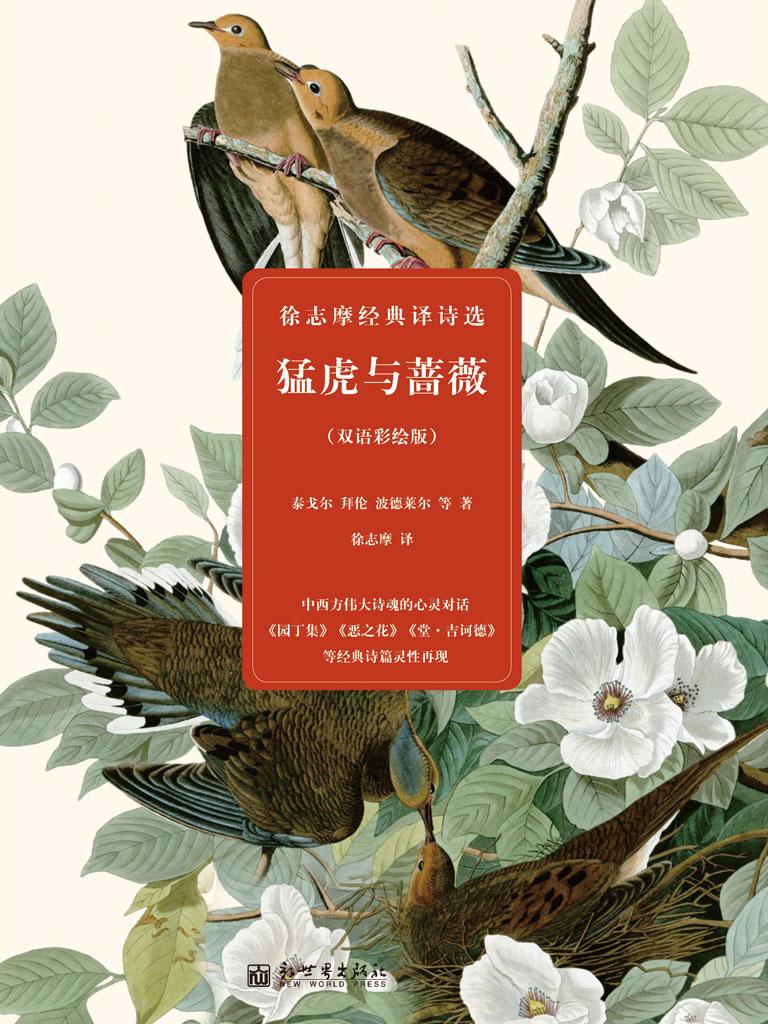 猛虎与蔷薇:徐志摩经典译诗选