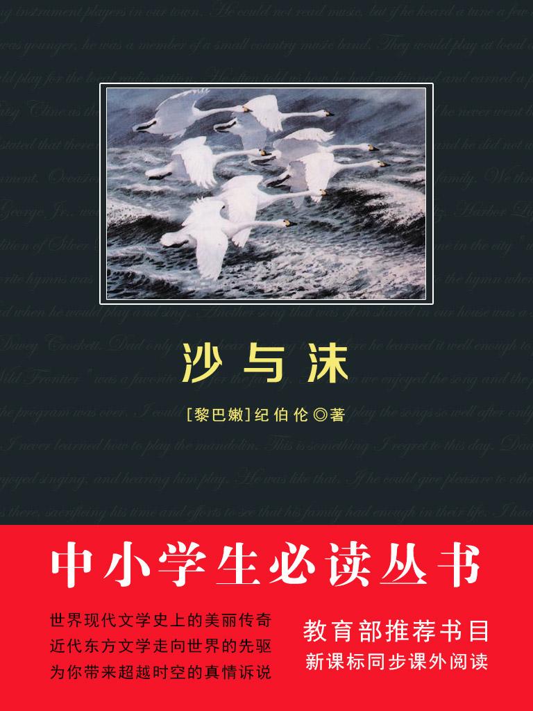 沙与沫(中小学生必读丛书)