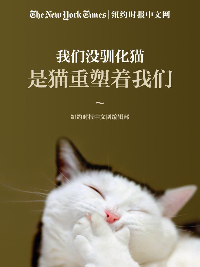 我们没驯化猫,是猫重塑着我们(纽约时报特辑)