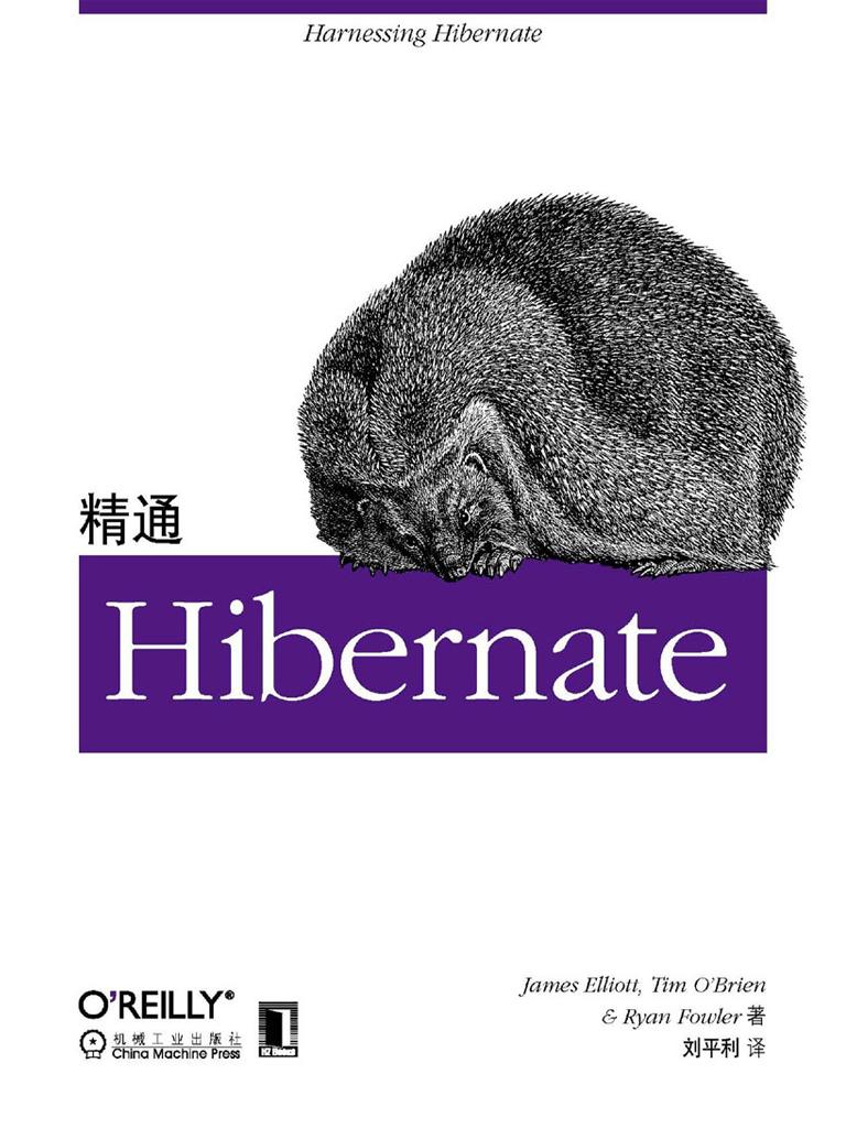 精通Hibernate