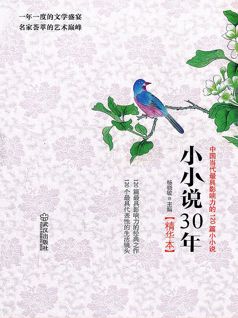 小小说30年精华本:中国当代最具影响力的120篇小小说